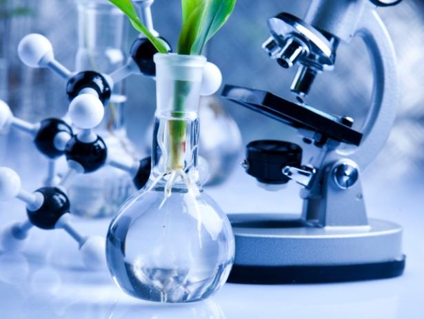 Od rośliny do lekarstwa