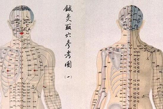 Ciało człowieka w TMC