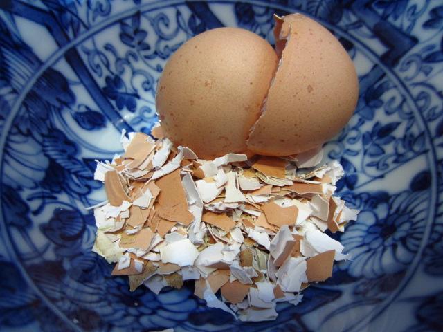Skorupki kurzych jaj zamiast suplementu wapnia